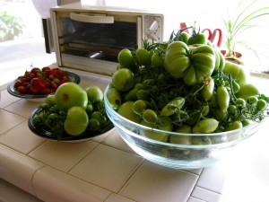 Nearly 11 pounds of green tomatoes