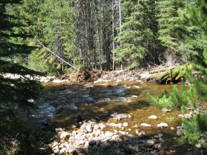 South fork of the Provo